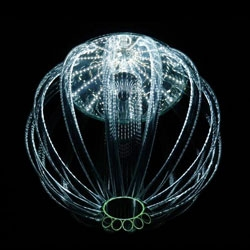 The biologically inspired Skyphos chandelier by Katerina Smolikova.