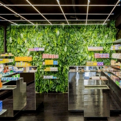 MaPharmacie, a Parisian pharmacy in the Bastille uses green walls of medicinal plants within their store.