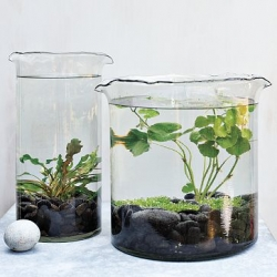 Fun Water Lily Vessels by Shane Powers for West Elm.