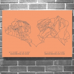 Re:fine alpine art with Minimalist Ski Resort Trail Art from lifts&bounds. Printed on canvas, the semi-custom art is gallery wrapped on a wooden frame, 40 resort designs and 30 color choices.