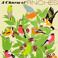 New collection of artwork from Woop Studios detailing British birds and their collective names. This one shows 'A Charm of Finches', with others including 'A Concentration of Kingfishers' and 'An Exaltation of Larks'.
