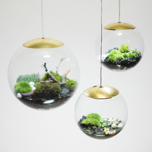 "Globe - the terrarium lamp by Richard Clarkson Studio. It is a suspended handblown glass ball in 12"" and 8"" diameters, available with or without an integrated LED light source."