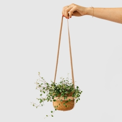 Melanie Abrantes Designs Winter Collection introduces new products and a new material- leather- to the designer's line of home goods focused on showcasing the natural beauty and unique qualities of hand-turned cork and wood.