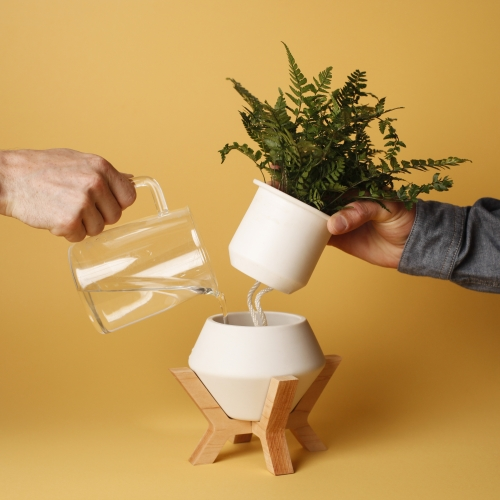 The Modest Matter Lander Planter - Porcelain and hard wood, self watering planter. Handmade in Santa Cruz California. Bringing life to living and work spaces in a simple, modern design.