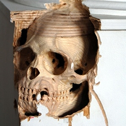 These incredible sculptures are the work of Canadian artist Maskull Lasserre who deftly extracts the most delicate anatomical forms of humans and animals from common objects.
