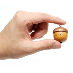 Totally adorable totally tiny Acorn iPod Speaker handmade out of natural cut apricot wood. Even has an FM radio function.