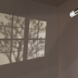 New shadow projector from Adam Frank - debuting at the NYIGF