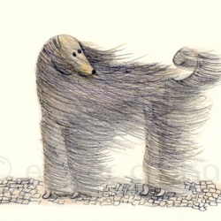 Dog illustrations by Eszter Csokas.