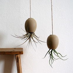 There's something about Michael McDowell's hand made ceramic hanging air plant pods ~ lovely! And they remind me of tin can + string telephones.