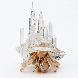 "Why Not Hand Over a ""Shelter"" to Hermit Crabs? from artist Aki Inomata is a series of 3D printed crab shells that have designed with buildings and cityscapes on them."