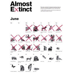 The Chase created this beautiful Almost Extinct Calendar for the BBC Wildlife Fund.