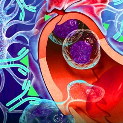 Some of the most amazing medical animation and illustration work from the best artists in the space - check out the portfolio of the Association of Medical Illustrators.
