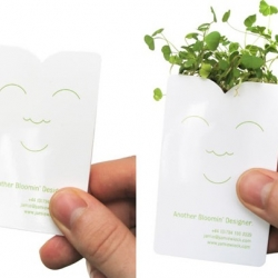 Jamie Wieck breathes new life into business cards with his Growing Business Card