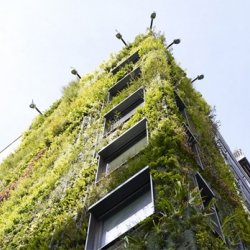 London's tallest garden! An eight story high vertical garden by Patrick Blanc featuring over 260 plant species, 12,000 plants, has been unveiled on the Athenaeum Hotel in London's Piccadilly neighborhood.