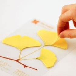Sangwoo Nam of Appree's Ginkgo and Leaf-it bookmark memo pads are adorable!