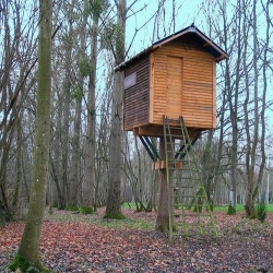 The Hut in the Tree, a more modern version of the Too High Teahouse.....