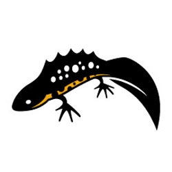 Love the new logo for Amphibian and Reptile Conservation by Tim Bernhard of Pangea Design.