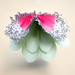 Artifical Flowers by French designer Sascha Nordmeyer. A range of hand-crafted complex shapes made out of colored, printed, punched and cut paper in order to set up an artificial foliage delights the mind.