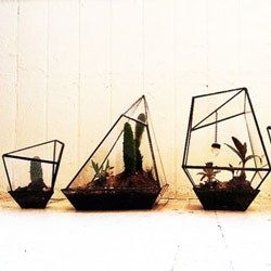 Great hand welded metal and glass terrariums from Assembly New York.