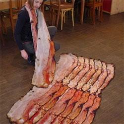 Fou Lard - silk bacon scarf by Natalie Luder