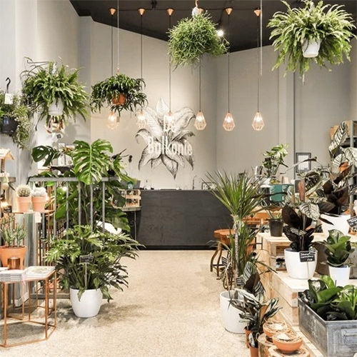 De Balkonie - a lovely plant store in Amsterdam. Great peek inside from Urban Jungle Bloggers.