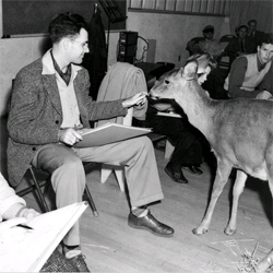 Fascinating NYtimes article on the depiction of nature in Disney movies inspired by the passing of Bambi animator Ollie Johnston.