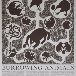 This print of Burrowing Animals tells some amazing tales regarding the animals that live underground. Prairie Dogs build themselves an elaborate burrow that includes nurseries, listening posts, look out stations and toilets.