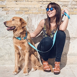 Brott Barcelona - beautiful, minimalist handmade dog collars and leashes in vibrant colors.
