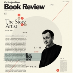 Cristiana Couceiro's cover for The New York Times, Book Review.