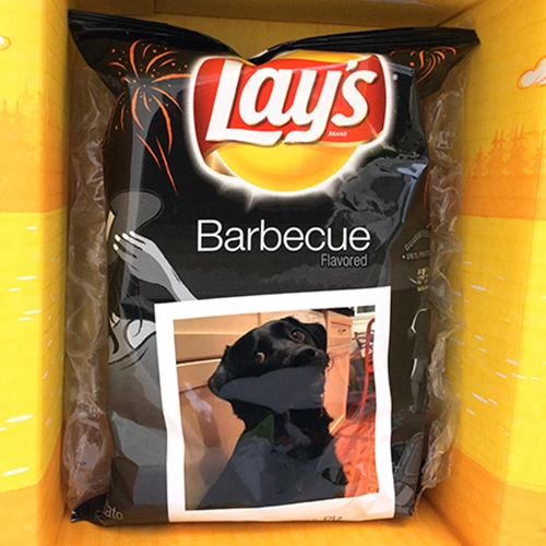 Lay's Summer - fun instagram campaign that turns digital (instagram pics) to physical (a real bag of chips with your picture on in!) Fun packaging - and check out our Lay's custom drooling Bucky BBQ potato chips!