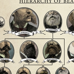 "For the first time in wall-mounted form, comes this handy 18"" x 24"" chart tracking the hierarchy of the many types of beard that currently adorn the face of Man. From the Wondermark collection Beards of our Forefathers, just $12."