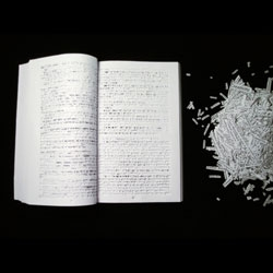 Ariana Boussard-Reifel's 'Between the lines' a text with every single word cut out.