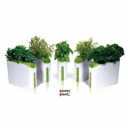 Grow your own food at home, even if you don't have time to that. The Prepara promess make it easy with its Power Plant.