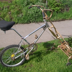 Apparently bike-mowers are gaining speed (sorry, couldn't help myself). Check out some modified bikes and their mower bits. From Treehugger.