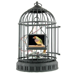 Nano Cages by Troy Abbott ~ adorable little technological cages with mini screens showing a bird twittering about... see the video!