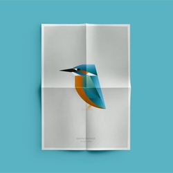 Birds by Manuel Martin from MUT, collection of posters inspired by the birds living in L´Albufera, a natural reserve covering 21,120 hectares south of Valencia, Spain.