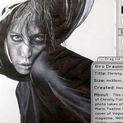 photo-realist drawings done in bic biro!