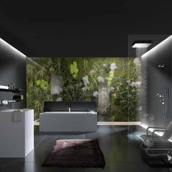 Bathroom minimalist design in black & white, but with additional nature concept. It can be seen on the back wall near the bath up.