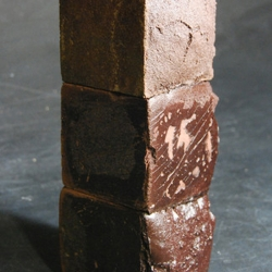 A recent grad develops bricks of blood for use in buildings.