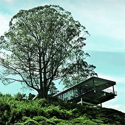 The BOH visitor center in Malaysia uses a steel structure to enclose a space full of natural light overlooking tea plantations. Amazing views, simple materials.