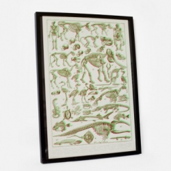 Bon Matin Les Squelettes 3D-Plakat - Humans and animals cavort in three dimensions on this art print using florescent green and magenta.