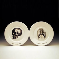 Lovely set of dinner plates and bowls with each plate featuring a different skeletal image and 'bone appetit' saying.