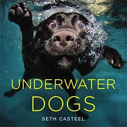 Underwater Dogs - the photography of Seth Casteel in book form!