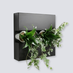 Flowerbox allows you to hang flowers on the wall.