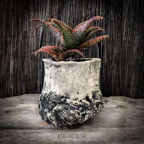 Brian Paul Design, aka @thepottist - Ceramic vessels created with nature in mind. Shape, texture, color and plant become one. The desire is to look as though the plant could have grown FROM the pot itself.