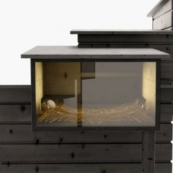 Breed Retreated by Frederik Roije is a great architectural hen house.