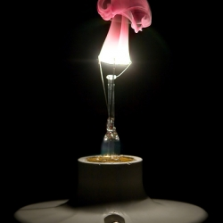 A gorgeous picture of a lightbulb in the process of burning out. You can see the original (with out red tint to the smoke) on the site as well.
