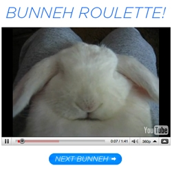 Bunneh Roulette! Bunny after bunny of the cutest random bunny clips ever! And while you're at it, donate to the ASPCA to keep all cuties safe from harm.