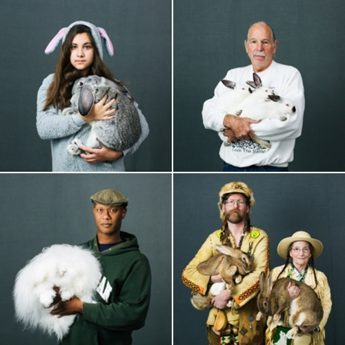 Katya Rezvaya captures the American Rabbit Breeders Association's prize winning rabbits and their owners in her Oh My Rabbits series.