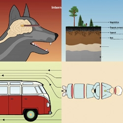 Very cool video by Tomas Nilsson who's school assignment was to reinterpret the fairytale Little Red Riding Hood for these modern times... great infographic animation to Slagsmålsklubben
